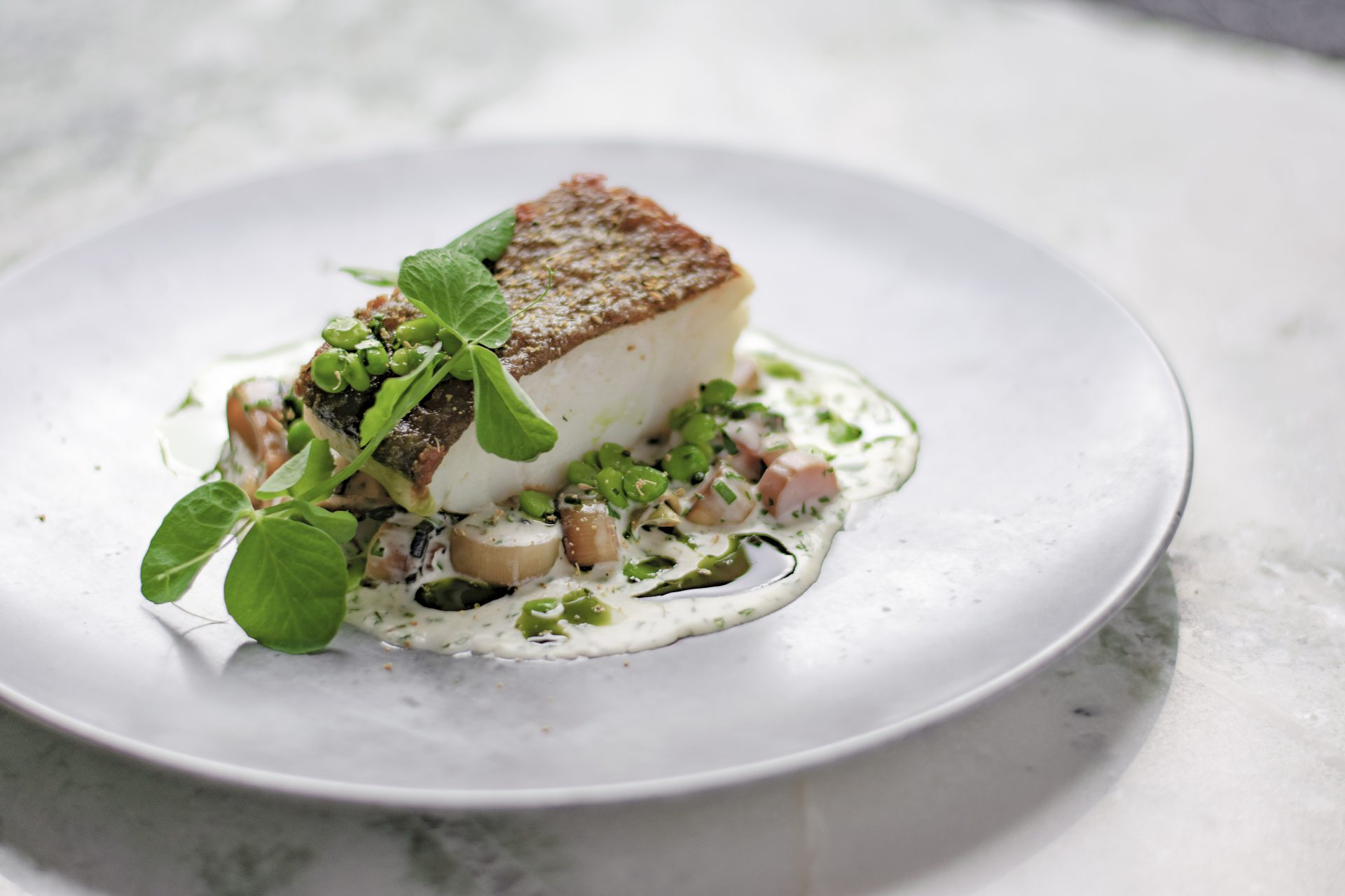 Close up of cod with herbs and sauce on plate